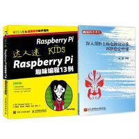 达人迷 Raspberry Pi趣味编程13例 python 编程入门 计算机硬件 树莓派入门教程+深入剖析主板电源设