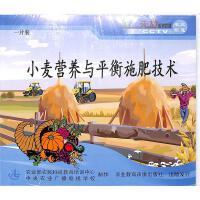 小麦营养与平衡施肥技术(一片装)VCD( 货号:103509011100307)