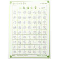 五六年级生字同步特效练字板凹槽字模儿童小学生楷书钢笔练字帖
