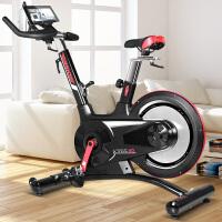 力动(RIDO)动感单车家用静音健身车室内自行车健身器材 智能版TX40