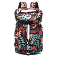 韩版旅行包女大容量双肩帆布登山背包运动健身轻便旅游行李包男