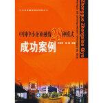 中国中小企业融资28种模式成功案例 王铁军,胡坚 中国金融出版社