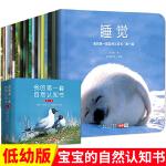 我的套自然认知书 全套20册 300余幅珍贵实景图儿童绘本0-3-5岁宝宝启蒙认知书幼儿早教书 动物植物大自然互动 幼