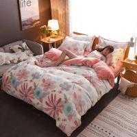 加厚珊瑚绒四件套韩版法兰绒冬季双面绒法莱绒被套床上用品