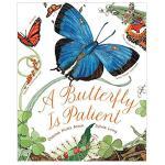 【预订】A Butterfly Is Patient耐心的蝴蝶 大自然绘本系列 英文原版儿童启蒙科普读物