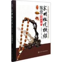 苏州橄榄核雕鉴赏新锐名家 姜跃进,张梵 化学工业出版社