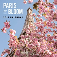 英文原版 繁花盛开的巴黎 2019年挂历 新年日历 Paris in Bloom 2019 Wall Calendar