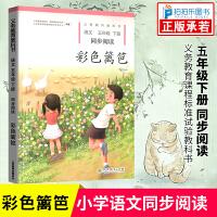 彩色篱笆五年级同步阅读人民教育出版社五年级下册自读课本