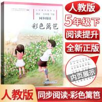 彩色篱笆 五年级下册同步阅读人民教育出版社自读课本
