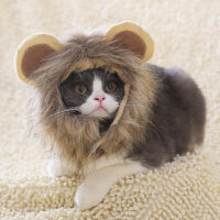 狮子头套猫咪帽子猫咪可爱变身搞怪宠物帽子宠物饰品猫咪头饰假发 抖音 狮子小耳朵帽子