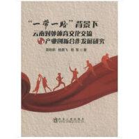 一带一路 背景下云南对外体育文化交流与产业创新合作发展研究 9787502482213 冶金工业出版社 聂锐新,杨晨飞,