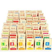 木制积木100粒汉字多米诺骨牌儿童玩具1-2-3-6一周岁宝宝识字