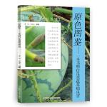 原色图鉴――一本书明白瓜类蔬菜病虫害