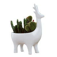 创意钥匙收纳小摆件可爱迷你鹿装饰品家居花盆工艺品客厅玄关摆设