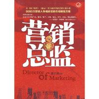 营销总监 廖剑勇著 长江文艺出版社