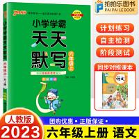 小学学霸天天默写六年级上册语文 人教部编版2021秋新版