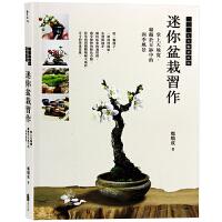 台版 迷你盆栽习作 掌上天地宽 盆栽植物 园艺设计书籍