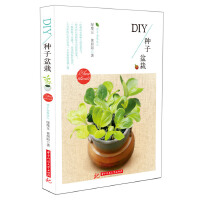 DIY种子盆栽 绿摩豆,黄照阳