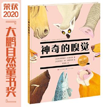 """神奇的嗅觉:一本揭秘动物嗅觉超能力的翻翻科普书 (揭秘海陆空30余种动物神奇的嗅觉超能力,展现动物超出人类想象的神奇力量/""""翻翻""""的形式让孩子从空间上了解动物鼻腔结构、生物特性,极富体验感)"""