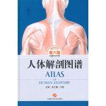 人体解剖图谱(第六版)