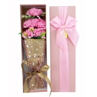 5朵仿真康乃馨香皂花束礼盒创意教师节礼物送老师实用小礼品 粉红色 康乃馨