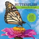 【预订】Butterflies: Exploring the Life Cycle