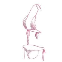 性感蕾丝诱惑三点式内衣套装 情趣诱惑刺绣丁字裤套装 情趣内衣