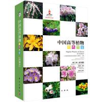 中国高等植物彩色图鉴 第六卷 被子植物 岩梅科―茄科