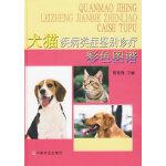 犬猫疾病类症鉴别诊疗(彩色图谱)