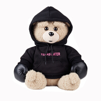 盼拳击小熊安全爆充电热水袋 暖宝宝电暖水袋电暖宝暖手宝 礼盒装