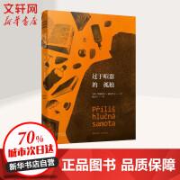 过于喧嚣的孤独 北京十月文艺出版社