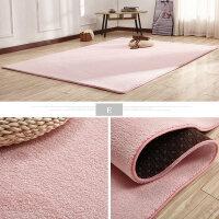 加厚客厅地毯茶几沙发卧室床边地毯舒棉绒防滑地毯可满铺