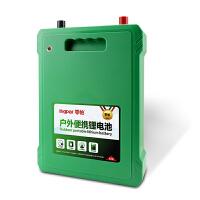 锂电池12V伏大容60AH大容量锂电瓶防水疝气灯逆变器电瓶电源