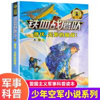 铁血战鹰队8 潜伏,无影的暗战 2021年广东省暑假读一本好书 中小学生课外阅读书 八路少年空军科普军事文学系列小说97