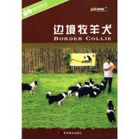 【新书店正版】边境牧羊犬,陈晨,宛钺著,科学普及出版社9787110069813