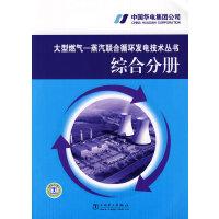 大型燃气―蒸汽联合循环发电技术丛书 综合分册