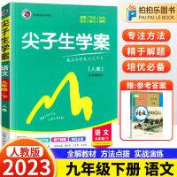 尖子生学案九年级下册语文人教版