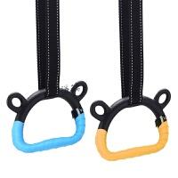 家用体能健身吊环引体向上儿童长高腰椎牵引器材拉环手柄 吊环+2米吊绳 【手胶】