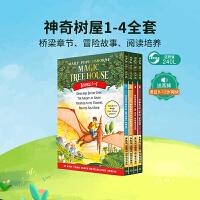 Magic Tree House 神奇树屋1-4本盒装  青少年课外读物 英文原版小说 章节书Dinosaurs Before Dark The Knight at Dawn