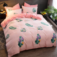 AB版珊瑚绒四件套加厚冬季法兰绒法莱绒被套床单1.8m米床品J