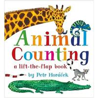 Lift-the-Flap Animal Counting 动物数数 英文原版 3-6岁低幼儿童英语纸板翻翻书
