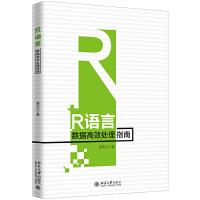 R语言数据高效处理指南