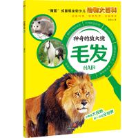 """神奇的放大镜:毛发(""""微距""""式呈现全彩少儿动物大百科,全面、精准展现奇妙的动物世界,激发孩子的求知欲与探索精神!)"""