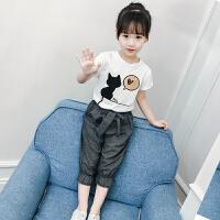 女童套装夏装新款韩版时髦儿童夏季衣服T恤短袖短裤两件套潮