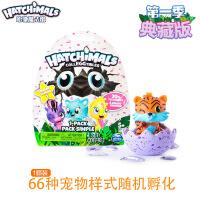 哈驰魔法蛋(HATCHIMALS) 迷你MINI哈驰魔法蛋益智仿真男女孩孵化神奇儿童玩具