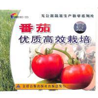 蕃茄优质高效栽培VCD( 货号:20000089756677)