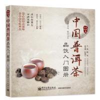 中国普洱茶品饮入门图册 陈龙 主编 电子工业出版社 9787121252723