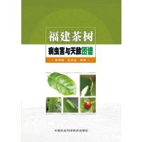 福建茶树病虫害与天敌图谱