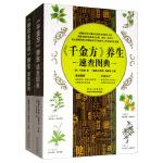 养生速查图册:《千金方》+《神农本草经》(全套2册)