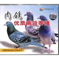 肉鸽优质高效养殖VCD( 货号:200000918369606)